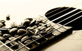 Cocoa beans on a classical guitar — Stock Photo