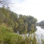 Landscape on the river near park. — Stock Photo #1453762
