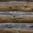 Old wooden logs - Foto de Stock