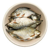 Bream for a flue-curing — Stock Photo