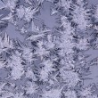 Frost patterns — Stock Photo #1416715