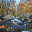 Stock Photo: White Oak Canyon