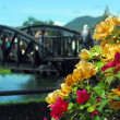 bridge over the river kwai — Stock Photo #1346344