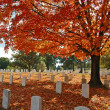 Royalty-Free Stock Photo: Arlington Cemetery