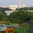 Washington DC Skyline — Stock Photo