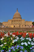 U.S. Capitol Building HDR — Stock Photo
