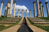 Capitol Columns — Stock Photo