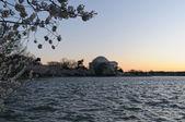 Jefferson Memorial — Stock Photo