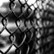 Royalty-Free Stock Photo: Metal grid