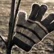 Warm glove — Stock Photo