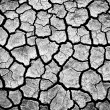 Royalty-Free Stock Photo: The cracked earth