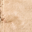Old paper — Stock Photo #1343791