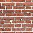 Red brick wall — Stock Photo #1771877