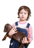 Little girl with dachshund puppy — Stock Photo