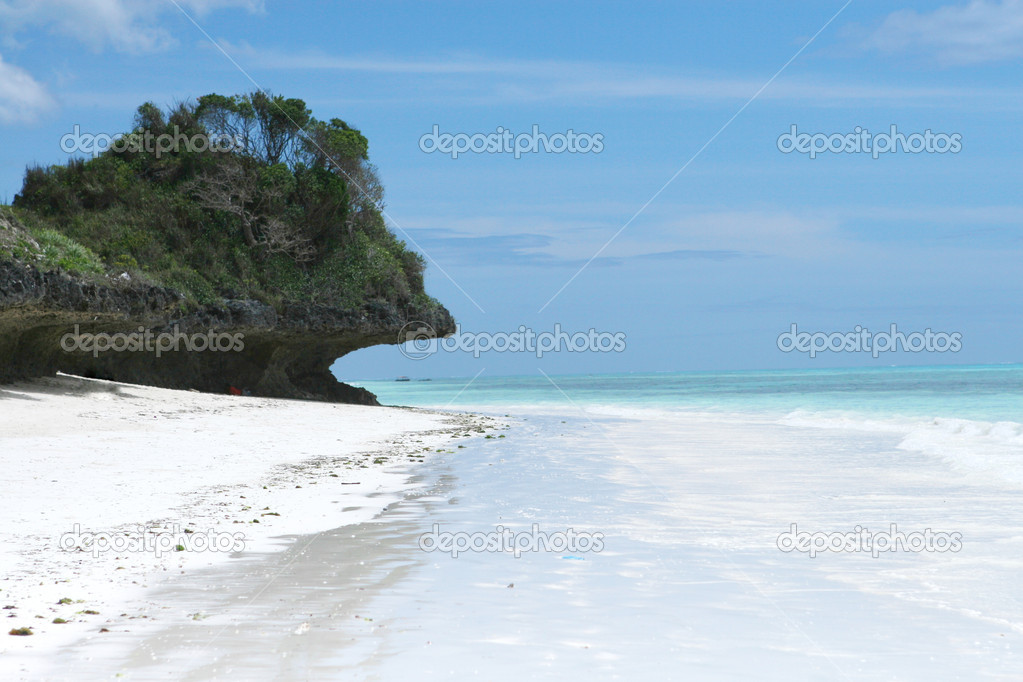 Tropical zanzibar beach in Indian ocean — Foto Stock #1774554