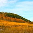 Summer landscape with hills of the Ural — Stock Photo