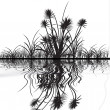 Silhouettes of grass with the reflection — Stock Photo