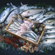 Fresh raw fish presented for sale — Stock Photo
