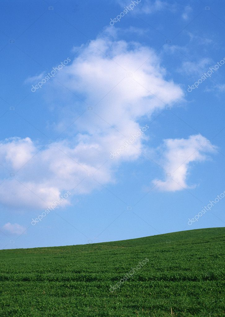 beautiful landscape under blue sky — Stock Photo #1380713