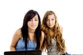 Colegas americanas com laptop — Foto Stock