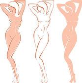 Belle femme nue — Vecteur