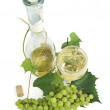 Wine, grapevine and grapes — Stock Photo