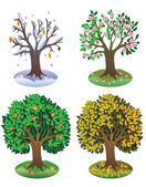 Four seasons of year — Stock Vector