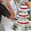 Stock Photo: Cutting Wedding Cake.
