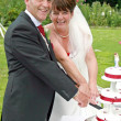 Stock Photo: Bride and Groom cutting the Cake