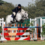 Horse Jump — Stock Photo #1390617