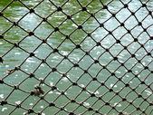 Rope Net — Stock Photo
