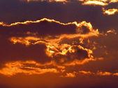 Coucher de soleil doré — Photo