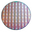 Stock Photo: Wafer of Microprocessor
