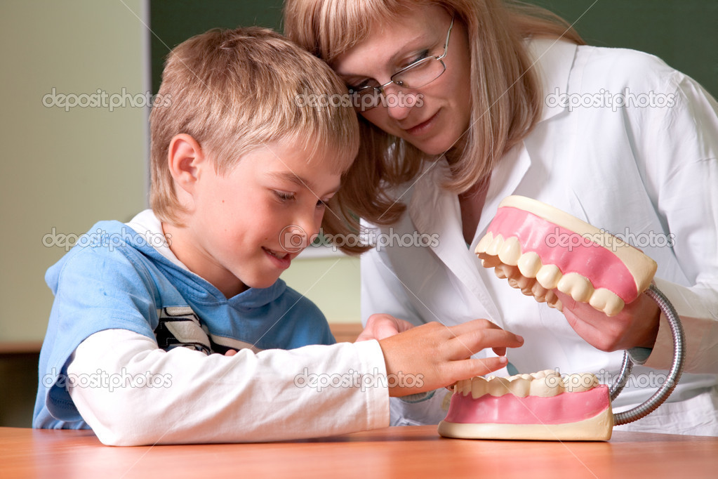 Dentist and boy with jaw of dentist's sample teeth — Stock Photo #1437088
