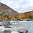 Altai landscape — Stock Photo #1368886