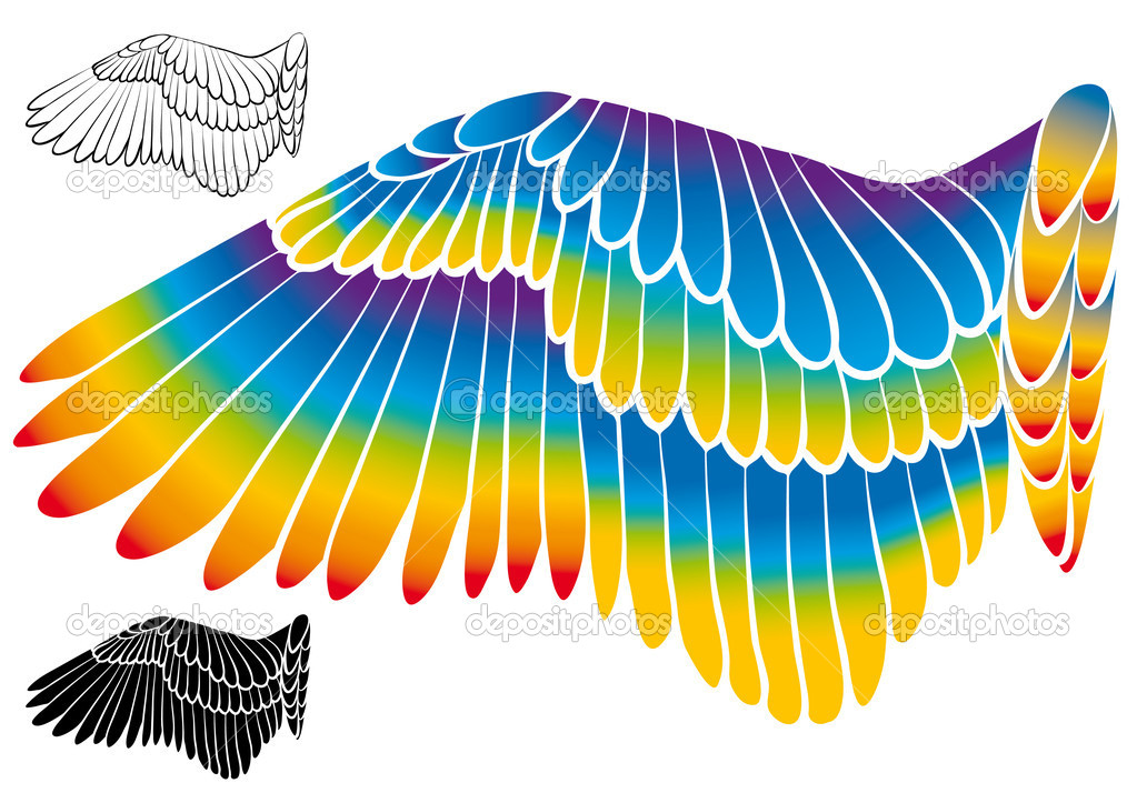 Colorful wing silhouette