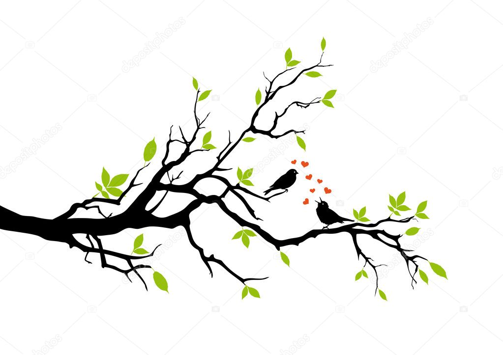 Tree branch with birds and leaves, vector — Stock Vector #1527410