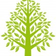 Green tree, vector — Stock vektor