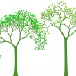 Spring trees, vector — Stockvektor #2447511