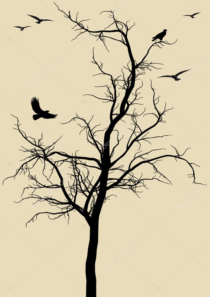 Black tree silhouette with eagles, vector background — Vektorgrafik #2516752