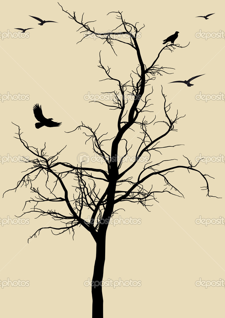 Black tree silhouette with eagles, vector background — Image vectorielle #2516752