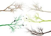 Branches d'arbres, vector — Vecteur