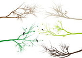 Tree branches, vector — Vettoriale Stock