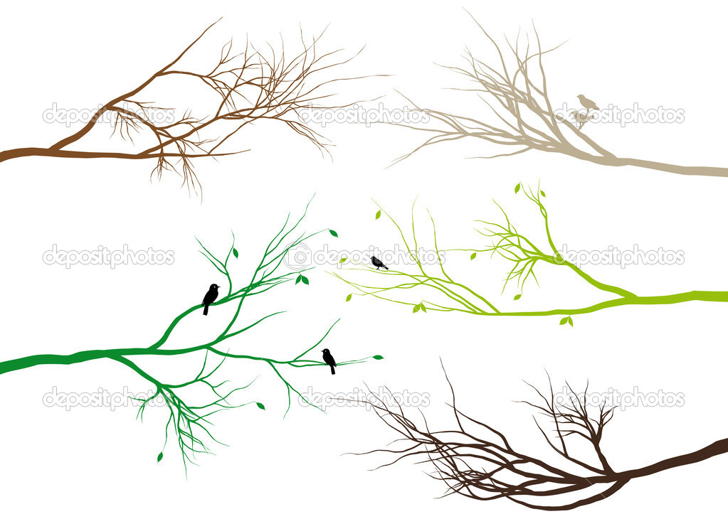 Tree branches with birds and leaves, vector background — Stock Vector #2657082