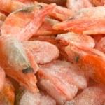 Frozen shrimps — Stock Photo