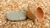 Dva kameny a cockleshell na písku — Stock fotografie