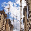 Stock Photo: Tall cranes on project