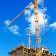 Stock Photo: Two cranes on project