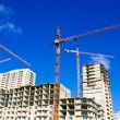 Stock Photo: Cranes on project