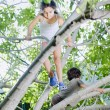 Young girl and boy on tree — Stock Photo #1337155